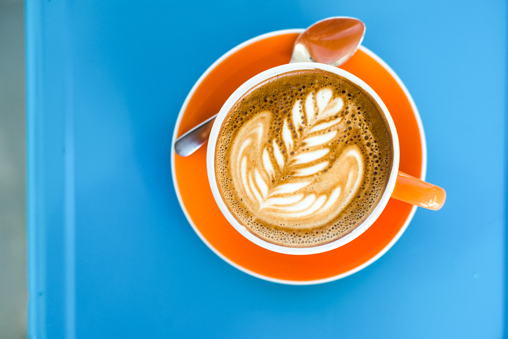Latte in Orange Cup on Blue Background at Prodigy Coffee in Denver Colorado